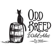 oddbreed-press-01