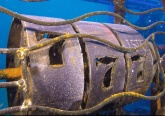 Shipwreck Park diving in Pompano Beach